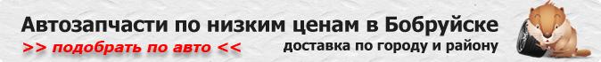 автозапчасти в Беларуси